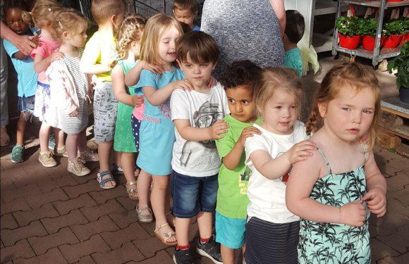 De kleuters van klas C1 bezoeken een tuincentrum