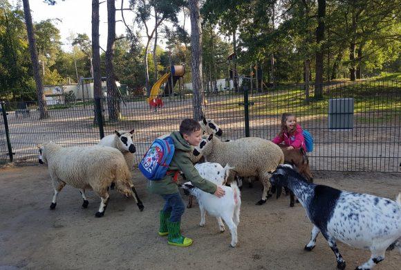 Kinderen Eltenbos bezoeken de kinderboerderij van Vossemeren