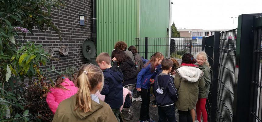 Workshop 'Composteren'